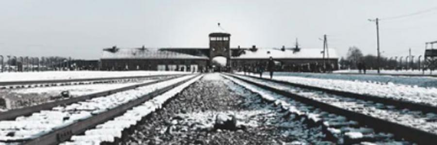 השואה הגיעה לאינסטגרם