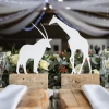 חתונה אזרחית בעיר פאפוס קפריסין