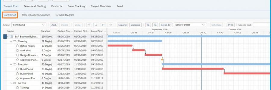 ניהול פרויקטים SAP ByDesign