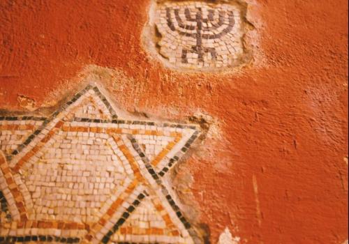 מדוע מנורת המקדש עשויה קנים? / אגרונום יצחק הל-אור