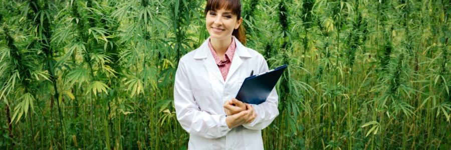 כל מה שצריך לדעת על תרופות מבוססות קנאביס